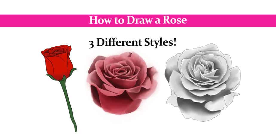 How to Draw a Rose – Most Complete Guide