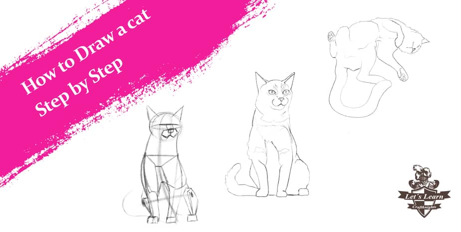 How to Draw a Realistic Cat. Step by Step Guide