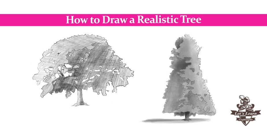 How to Draw a Realistic Tree?