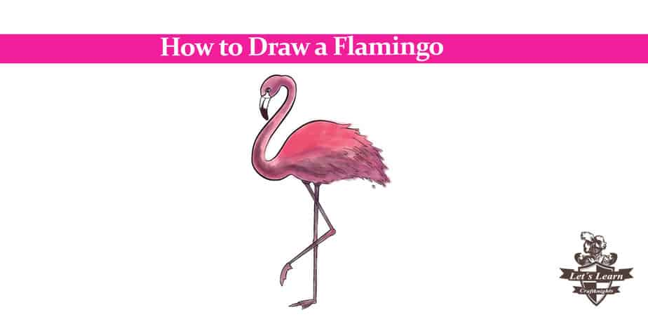 How to Draw a Flamingo | In 4 Easy Steps