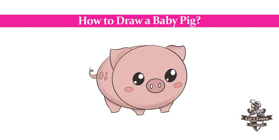 How to Draw a Baby Pig? Step by Step Guide
