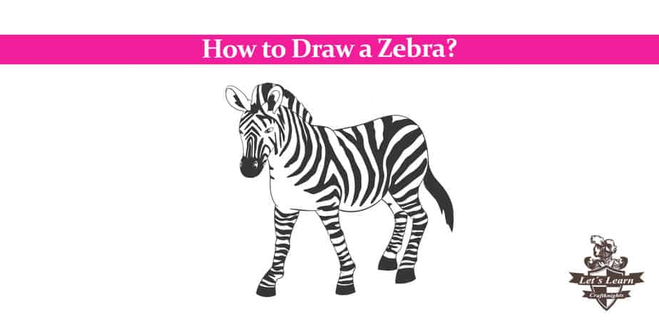 How to Draw a Zebra? – Easy Step by Step Guide