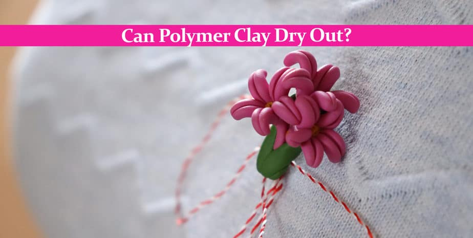 Can Polymer Clay Dry Out?
