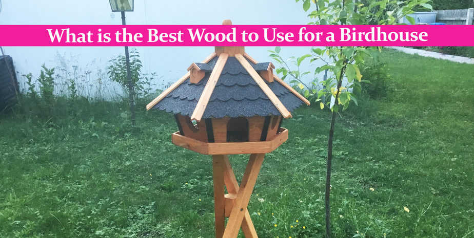 What is the Best Wood to Use for a Birdhouse