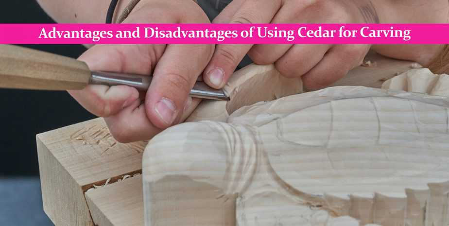 Advantages and Disadvantages of Using Cedar for Carving