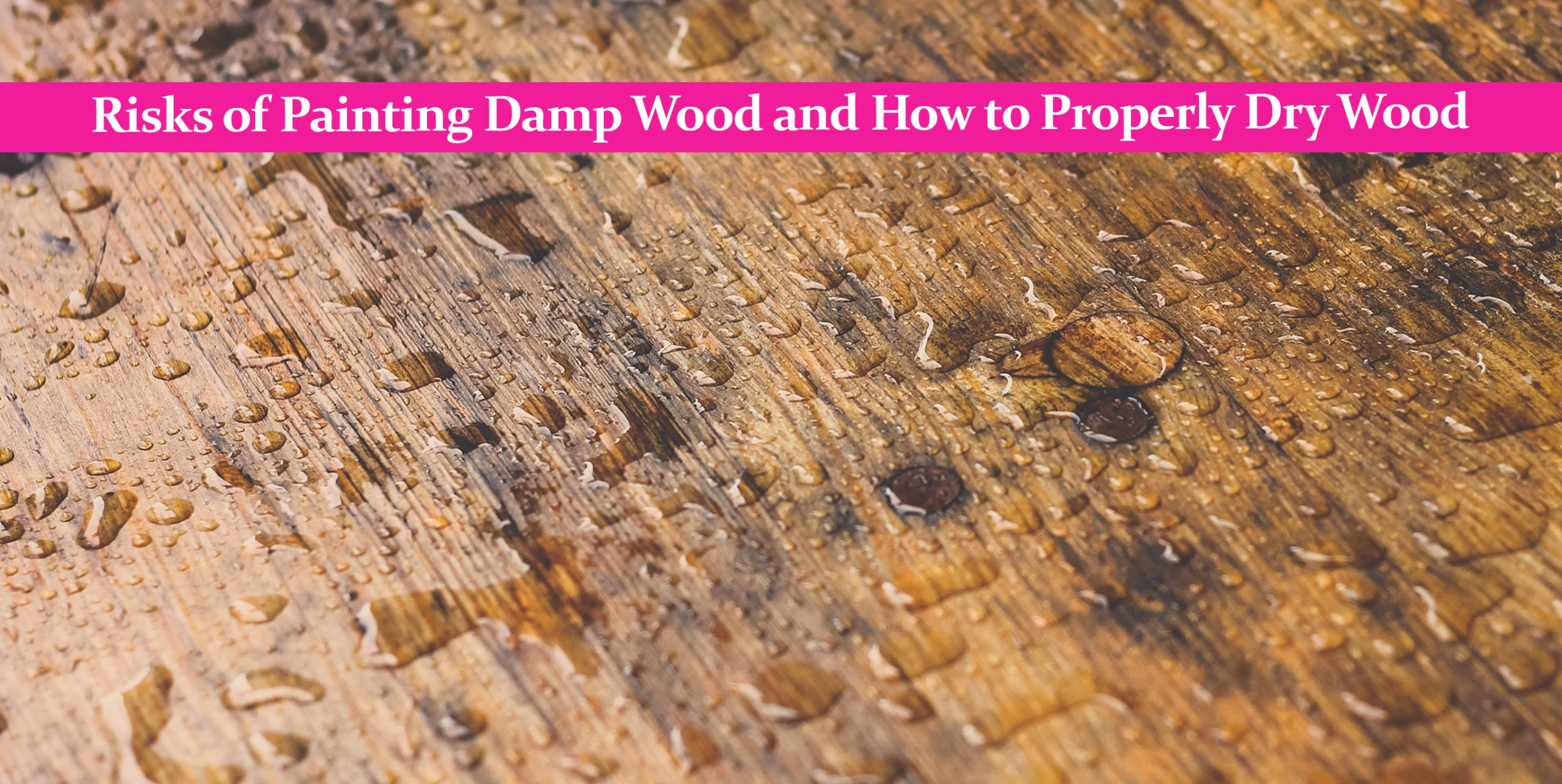 Risks of Painting Damp Wood and How to Properly Dry Wood