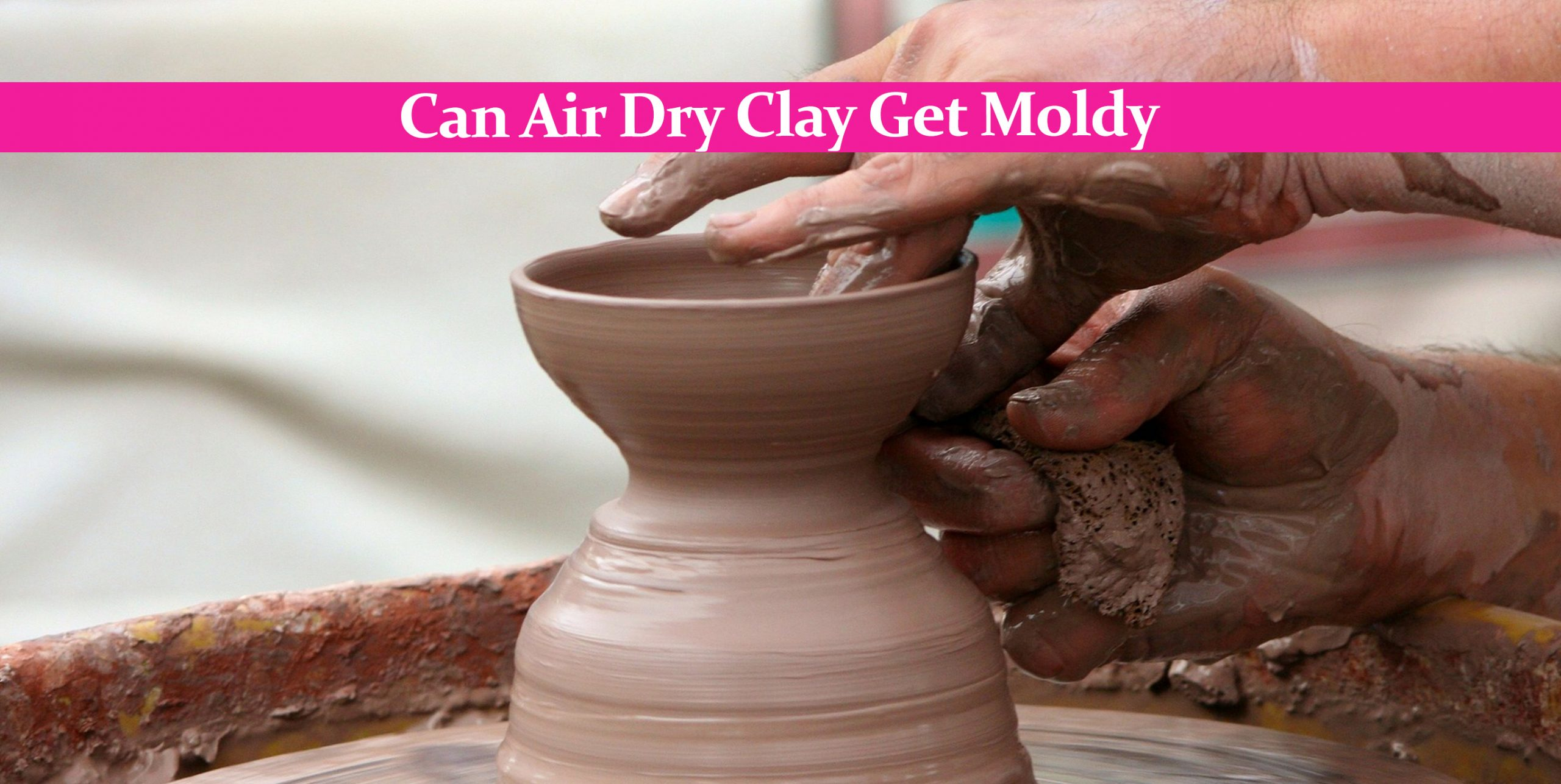 Can Air Dry Clay Get Moldy