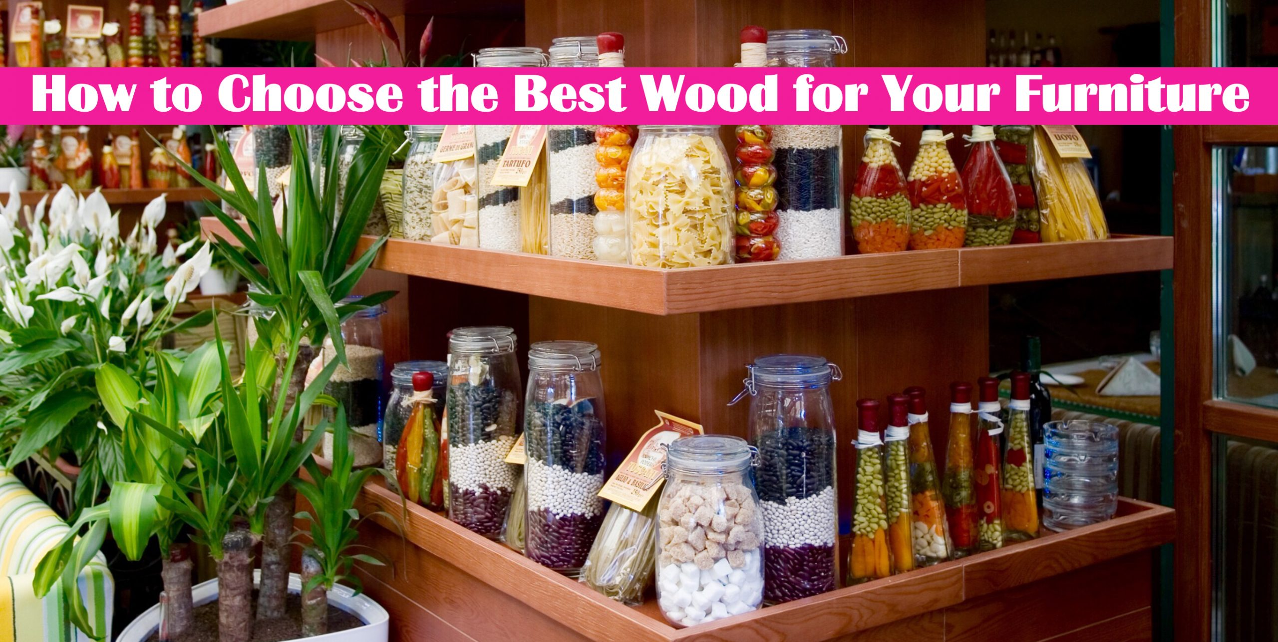 How to Choose the Best Wood for Your Furniture